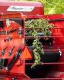 Hop Harvester 2